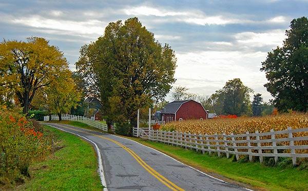 Fall scenery 2 by taichidot