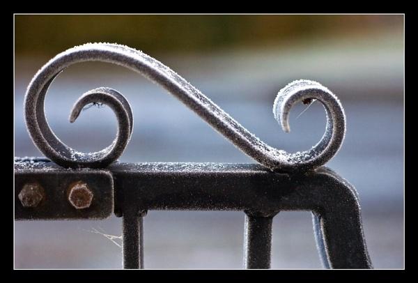 Gate Detail by danbrann