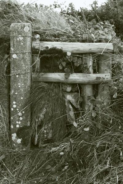 Old Gate Post, Roch by ckristoff