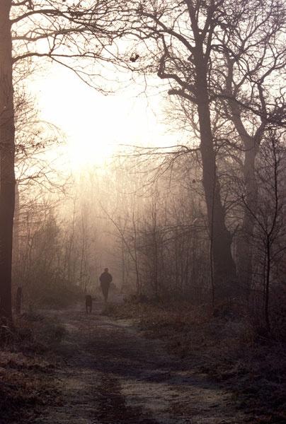 winter walk by liversalts