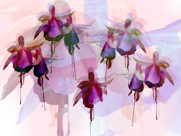 Nine ladies dancing by helenlinda