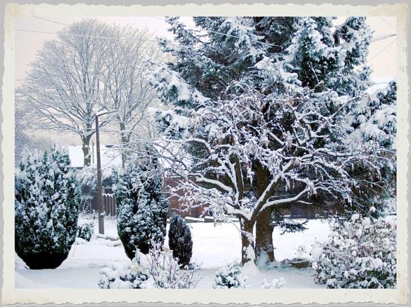 Snow by Stuart463