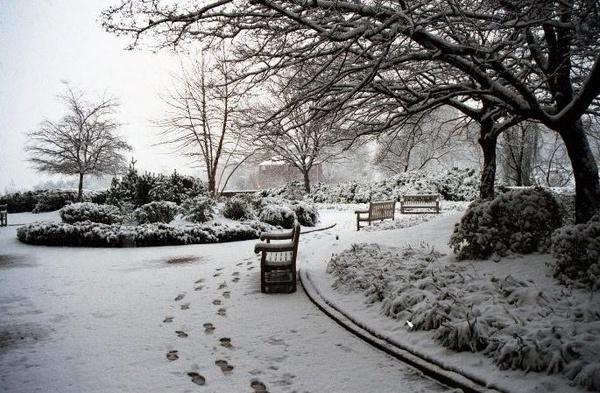 White Walk by Nabs
