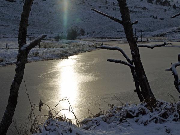 Winter Sun by iainmacd