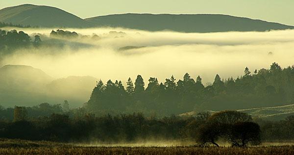 Steaming Bog by DaveH64