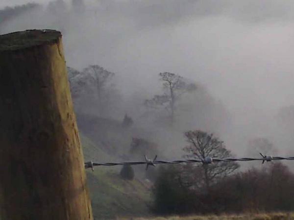 Foggy day by HalfBeard