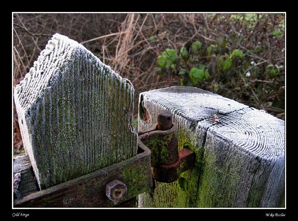 Cold hinge by oldgreyheron