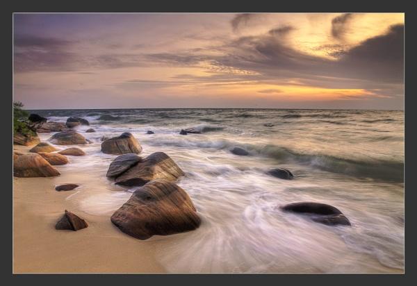 Golden Morning by dmhuynh72