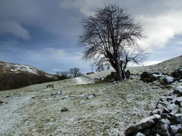 A Swaledale Winter Scene by f11digital