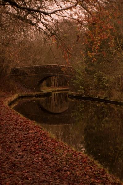 Autumn walk by Tettie