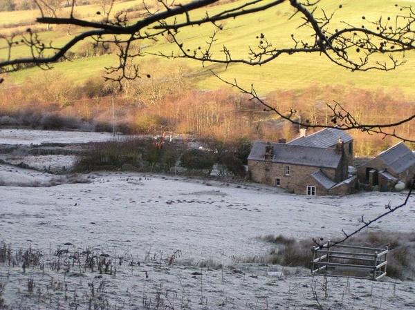 Frosty Morning by spireite