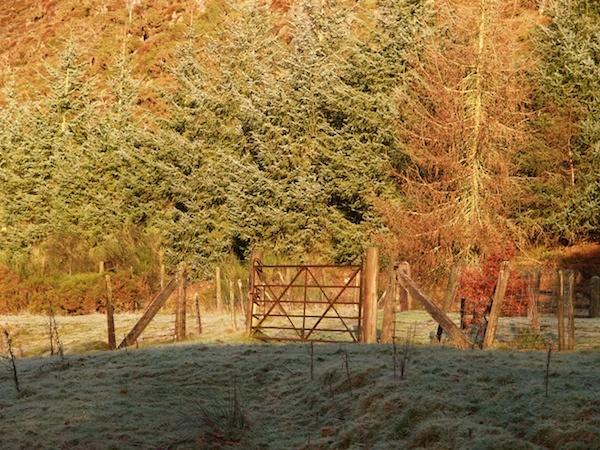 A Winter scene by Willmer