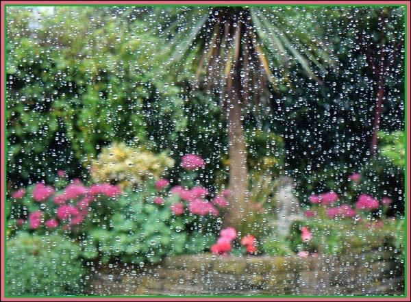 Rain Rain Summer 2008 by KATJON