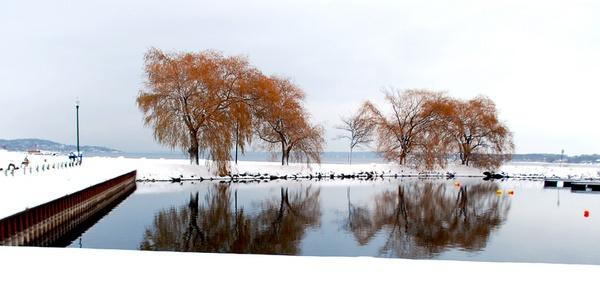 winter! by chrismason
