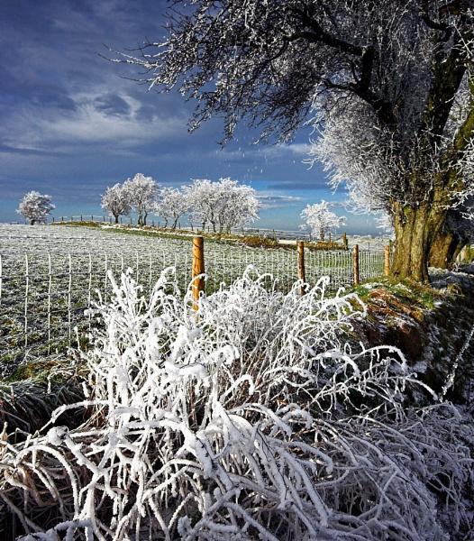 Frozen by NeilM