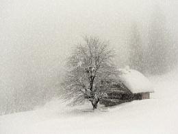 winter scene II.