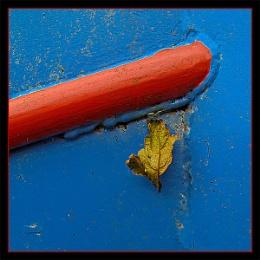 Leaf 18