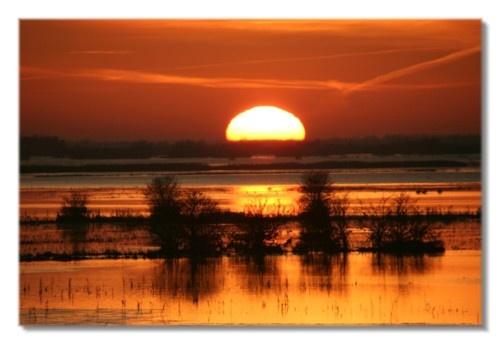 welney sun set by ayliffe