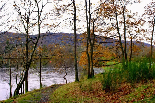 Windermere by colym