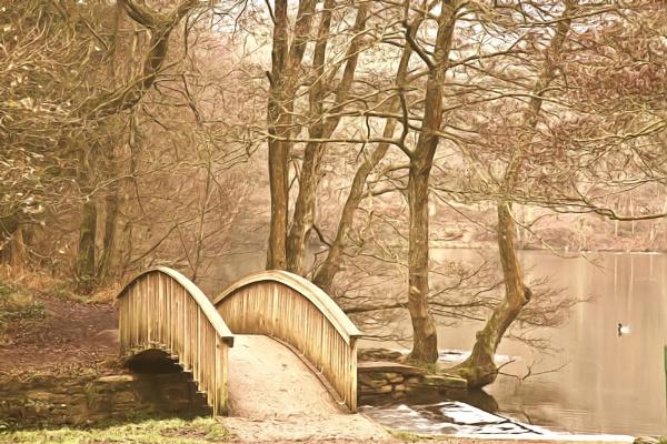 Cannop Bridge 04 by MikeA