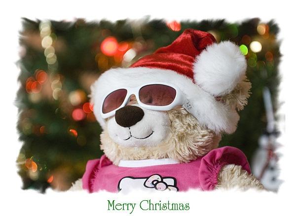 Beary Merry Christmas by dancingqueen
