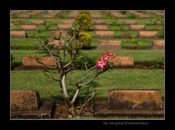 War graves of Kanchanaburi by limmy62
