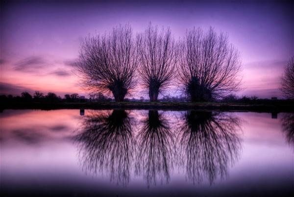 purple haze by Strobe