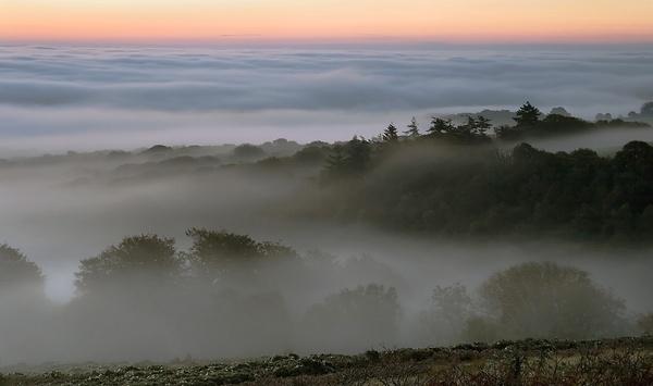 Manaton Mist by lakemans