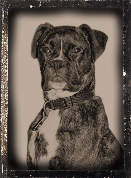 Digital Daguerreotype by Stuart463