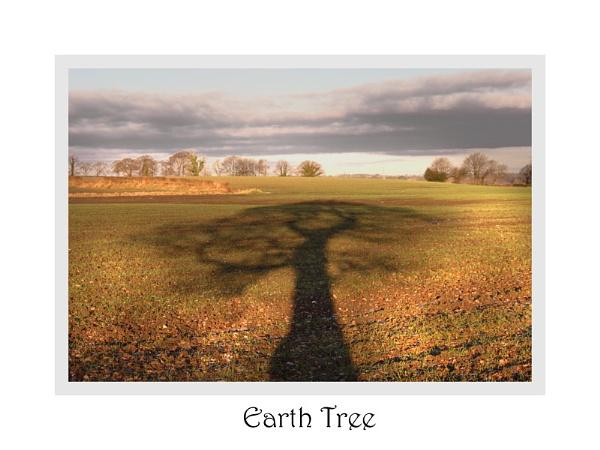 Earth Tree by carlw