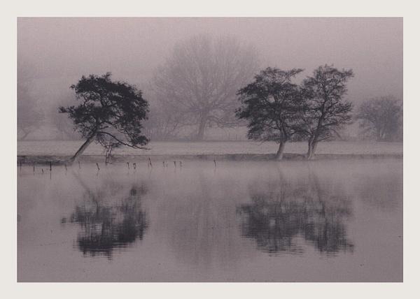 mist by carlw
