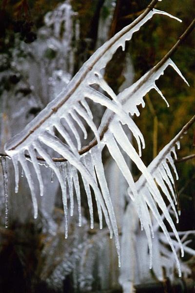 Icy Splendour by phototwink