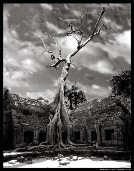 Ta Phrom by edsephiroth
