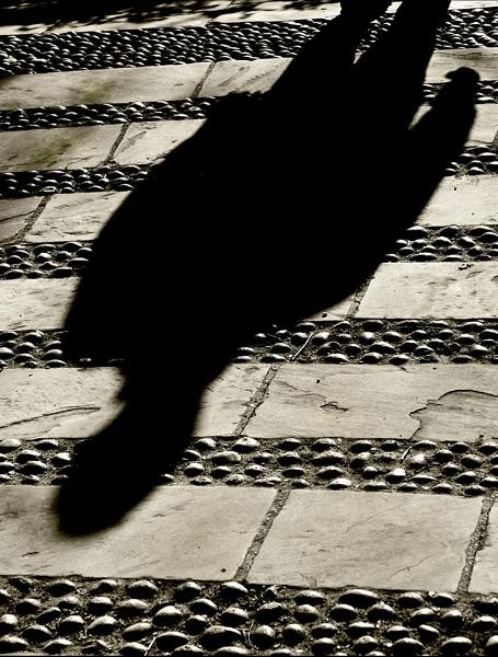 Approaching... by Lynnk