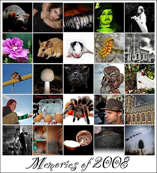 2008 by imander