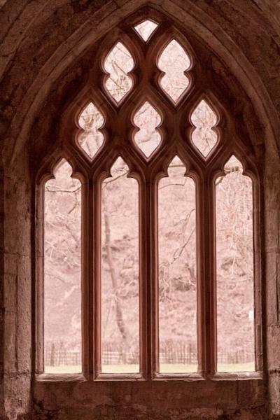 Abbey Window by Tettie