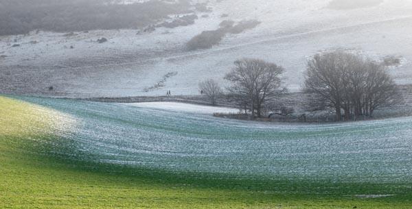 Frosty morning walk by dawnstorr