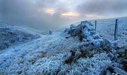 Frozen Valley