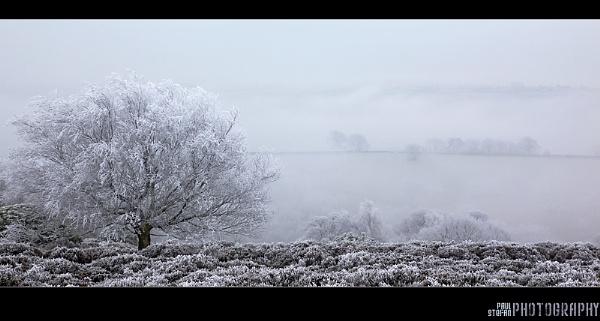 stanton frost by paulstefan