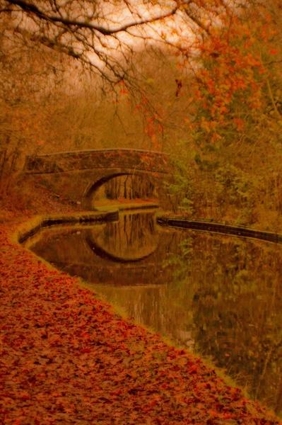 Autumn Walk - v2 by Tettie