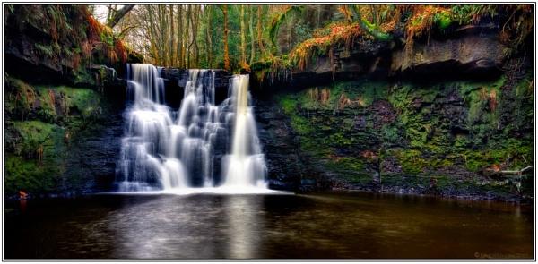 Goit Stock Falls by fatherpie