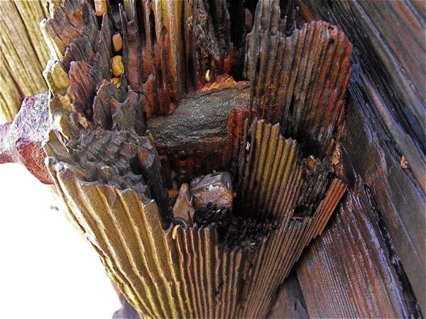 Jagged wood by izziwizkid