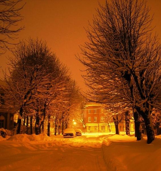 Winter Charm by Eiginta