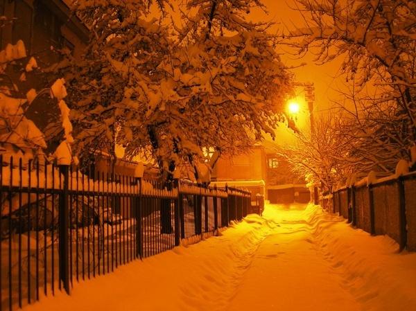 Winter Charm 2 by Eiginta