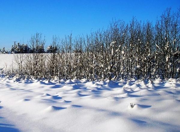 Molehills of Snow by Eiginta