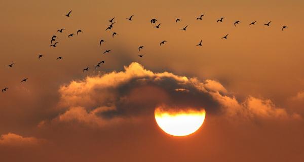 Portinfer sundown by jonny250