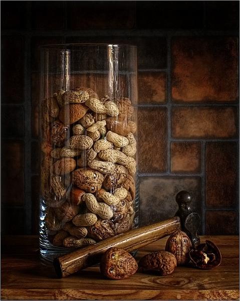 The nut house by clintnewsham