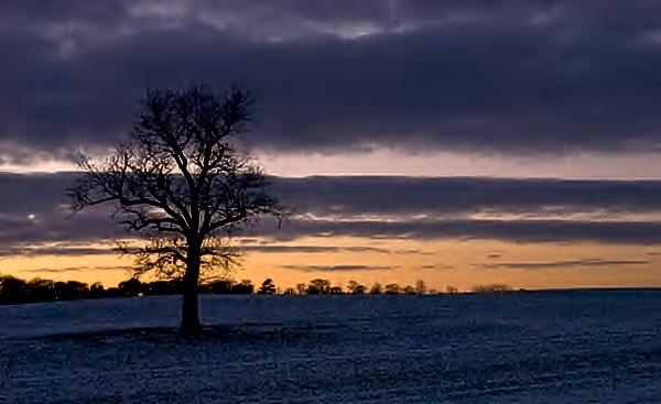 dusk A41 -3C by joetcat