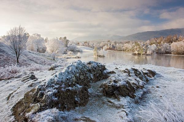 Winter Wonderland II by bazhutton