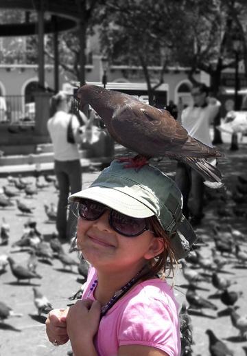 Bird Head by lauracmar